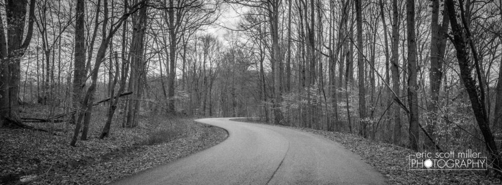 The winding road...sans color.
