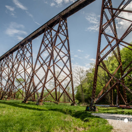 The Tulip Trestle sits outside Bloomfield, Indiana and is the largest working rail structure of its kind in the world.